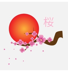 Branch of sakura blossoms vector