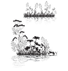 Silhouettes of grass and flowers vector