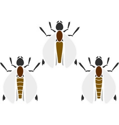 Set of insects stencils vector