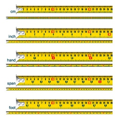 Measuring tape vector