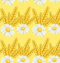 Summer chamomile field seamless pattern vector