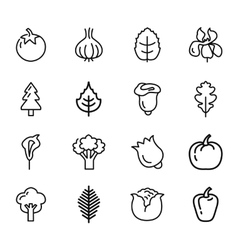 Vegetables and fruits icons vector