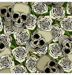 Seamless pattern with skulls and white roses vector