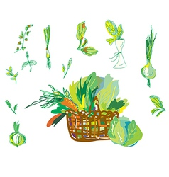 Vegetables and greens set with basket vector