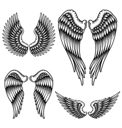 Set of wings vector