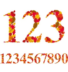 Numbers made with leaves floral numerals set vector