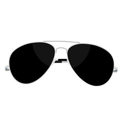 Sunglasses steel vector