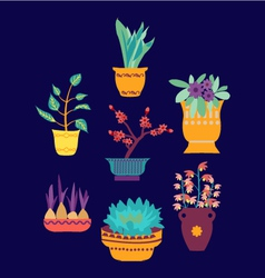 Plant on pot botanical set vector