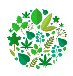 Green leaves abstract background vector