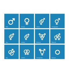 Sexual orientation icons on blue background vector