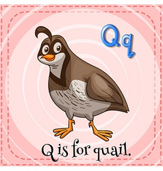 A letter q vector