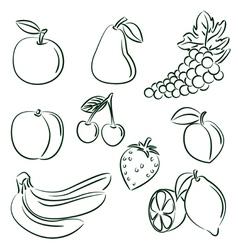 Fruit doodle set vector
