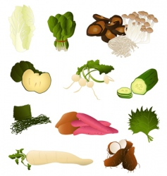 Japanese vegetables vector