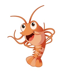 Funny shrimp vector