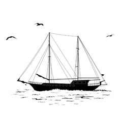 Sailboat in the sea and birds silhouettes vector