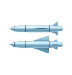 Ruise missile vector