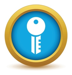 Gold key icon vector