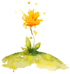 Hand painted yellow watercolor flower vector