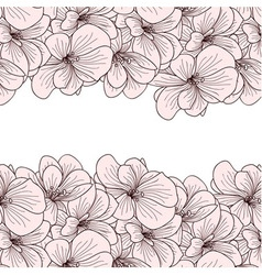 Geranium flowers background vector