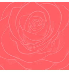 Background with red rose close-up vector