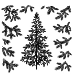 Christmas tree and branches silhouettes vector
