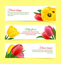 Tulip banner set vector