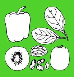 Green contour vegetables set vector