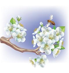 Flowering branch vector