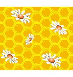 Seamless background with honeycombs vector