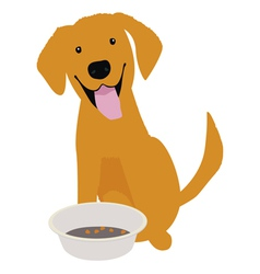 Golden retriever with empty bowl vector