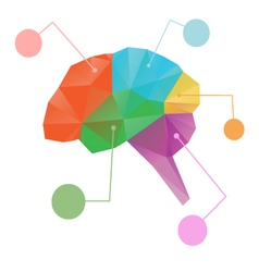 Brain abstract isolated vector