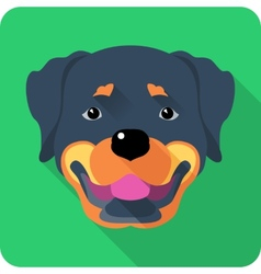 Dog rottweiler icon flat design vector