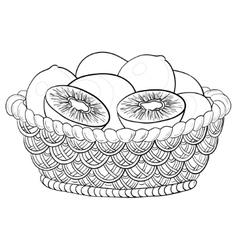 Basket with kiwi fruits contours vector
