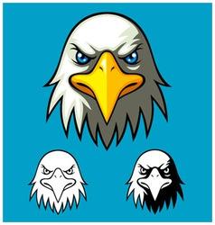 Bald eagle head vector