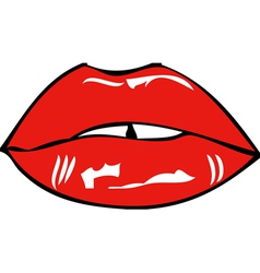 Mouth and lips vector