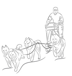 Hand drawn of dogs pulling a sled vector
