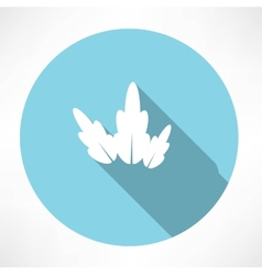 Petal icon vector