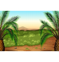 Palm plants and grass vector