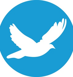 Dove for peace concept and wedding design flying vector