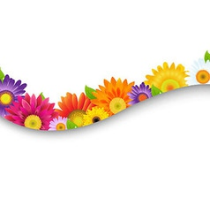 Colorful gerbers flowers frame vector