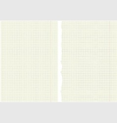 Sheets from a notebook in a cage vector