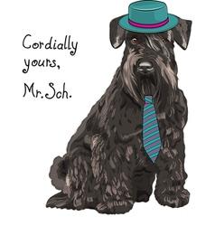 Hipster dog schnauzer vector