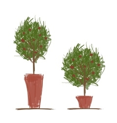 Pots with green tree for your design vector