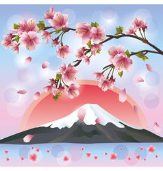 Japanese landscape with mountain and sakura vector