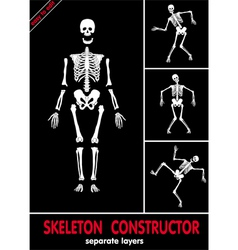 Skeleton constructor vector