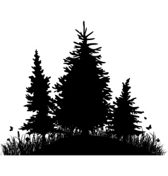 Fir-trees on a hill with grass and butterflies vector
