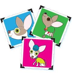 Chihuahua photographs vector