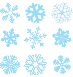 Snowflake winter set illustration vector