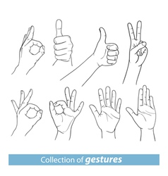 Gestures of human hands vector