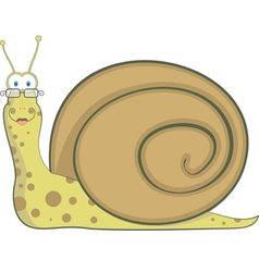 Snail home vector